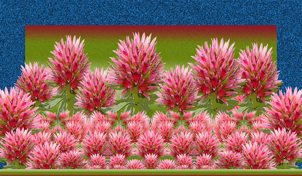 Queens Crown at Stony Pass print of photograph transformed into digital art for sale by Maureen Wilks