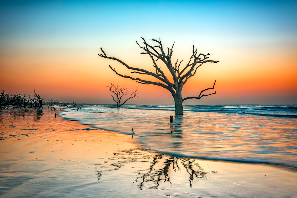 Reflections Erased at Botany Bay Plantation by Rick Berk