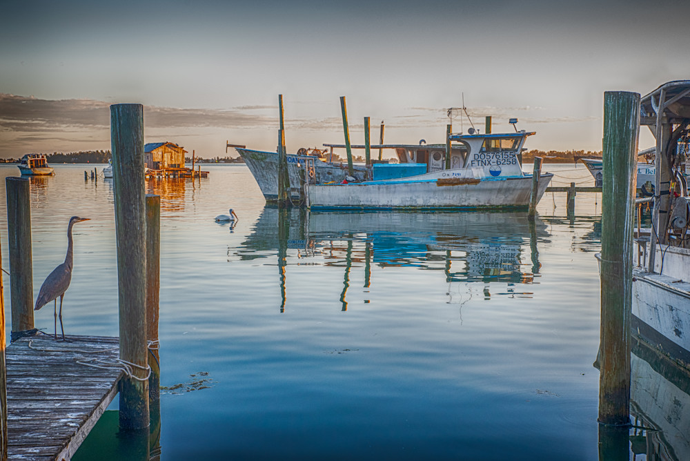 The Boathouse Art | Artist David Wilson