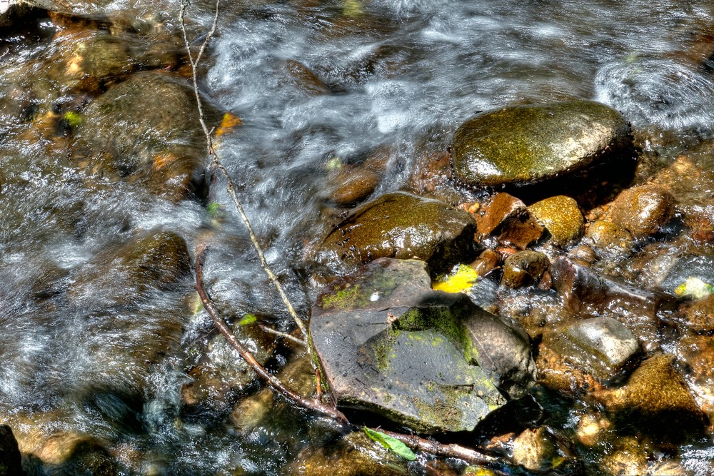Yamhill River Flow