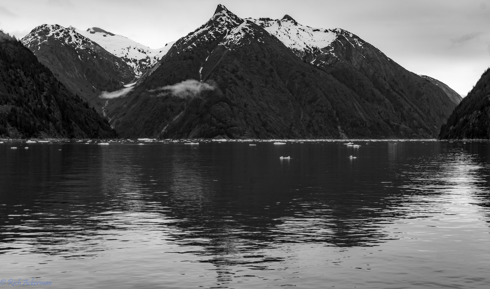 Forest peaks, mist and reflections Endicott Arm | AK