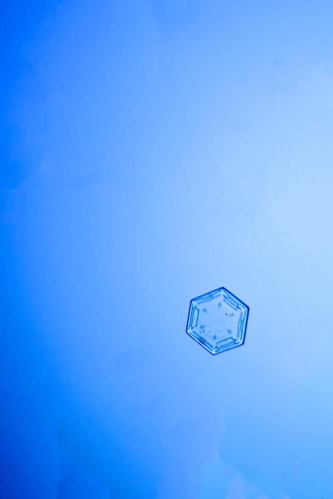 Snowflake Series III