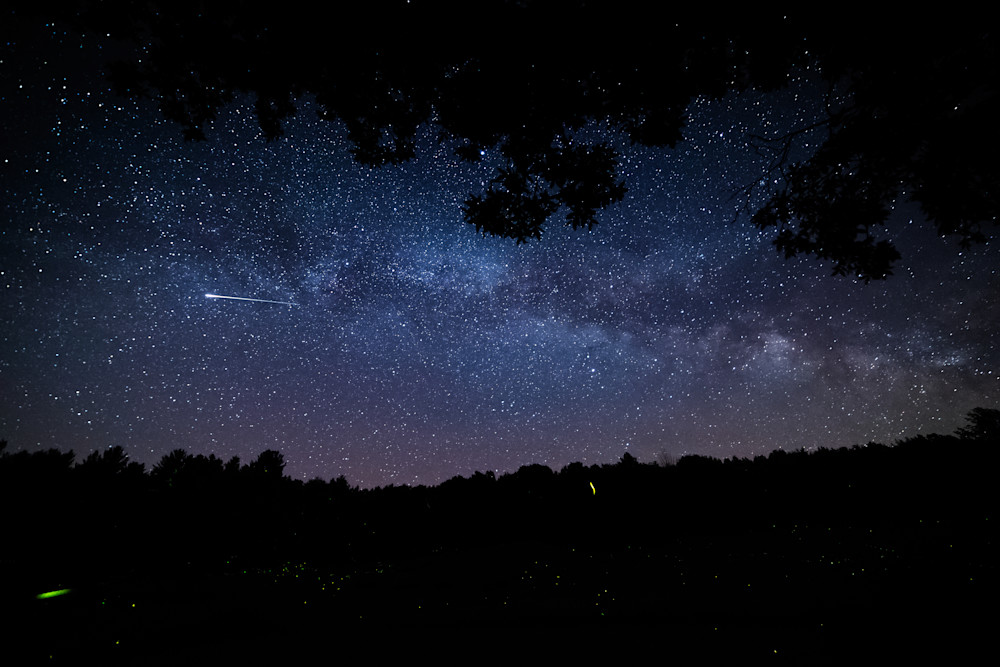 The Milky Way Fireflies and Shooting Stars