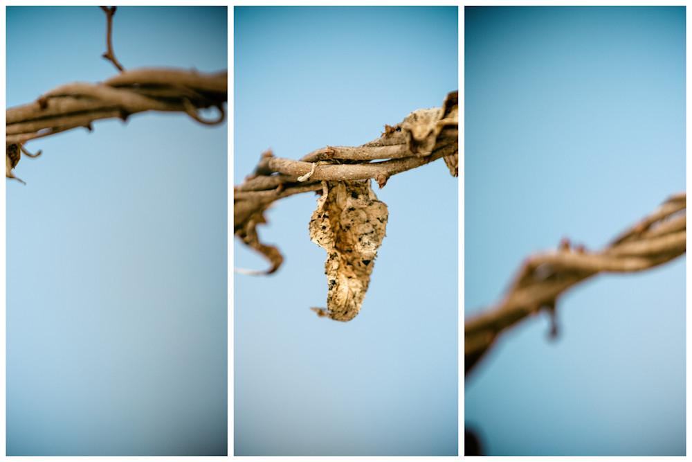 Empty I Photography Art | Nathan Larson Photography, LLC