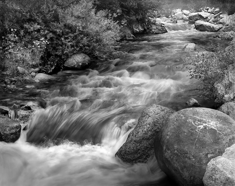 Streamside, Colorado Photography Art | David Zlotky Photography