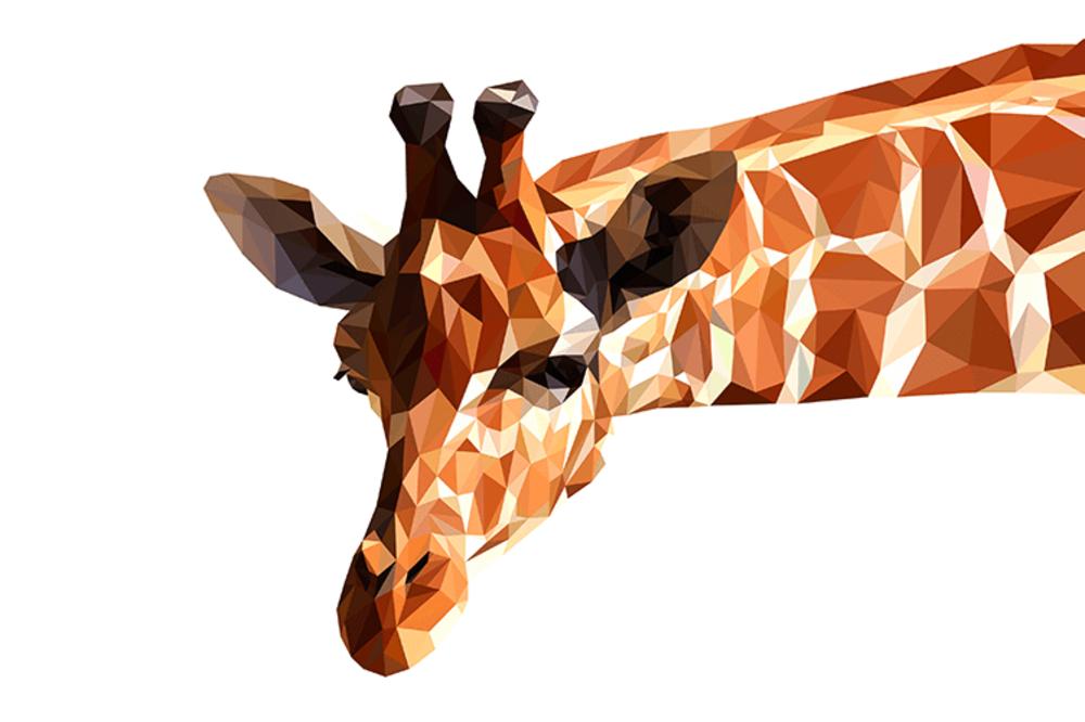 Abstract Giraffe   Koop kunstfotografie print online   A-Galleria