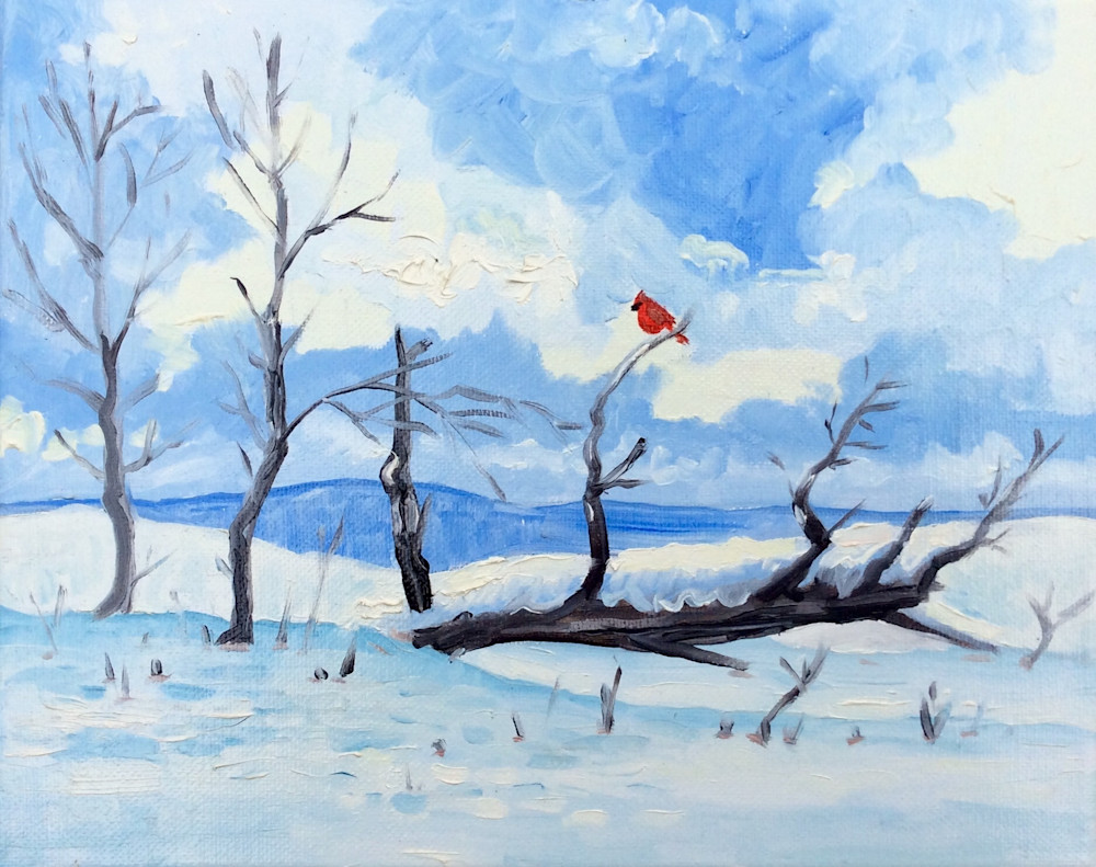 The Cardinal after the snowfall fine art print by Hilary J. England