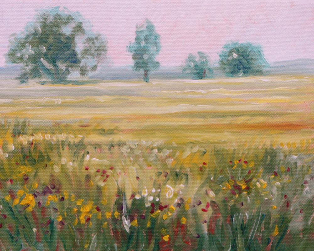 Foggy field of wildflowers fine art print by Hilary J England