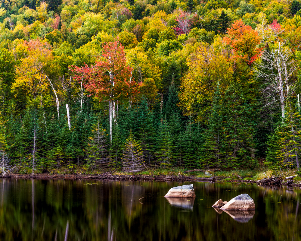 Whiteface Pond Ny Photography Art | Gale Ensign Photography