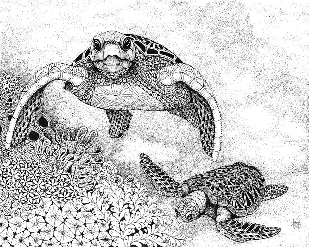 Hello (sea turtles)