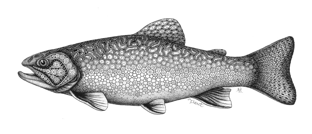 "Trout Art | Kristin Moger ""Seriously Fun Art"""