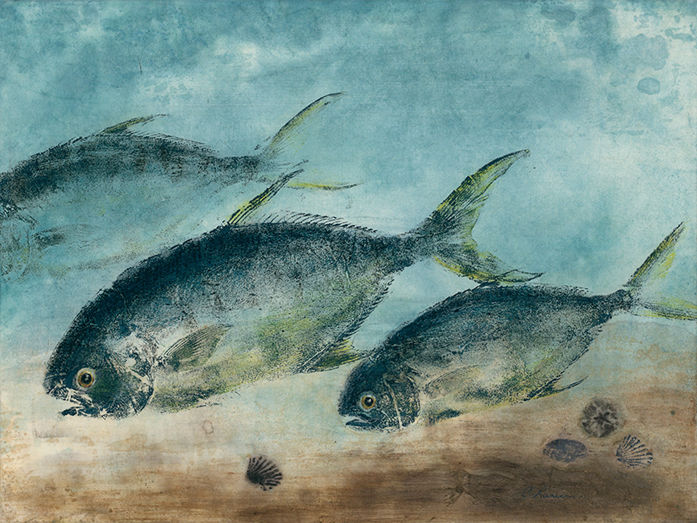 """Camera Setup: """"BetterLight 6150 