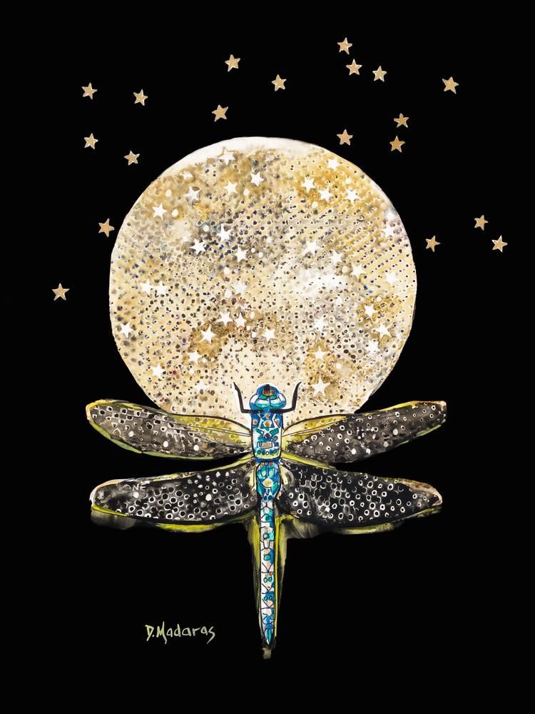 Fly Away by Diana Madaras