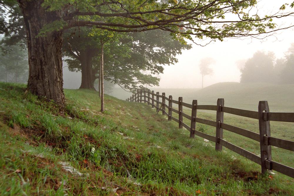 Pastoral Distance