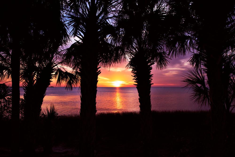 Suncoast Sunset