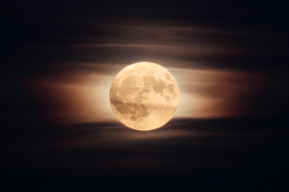 Super Hunter's Moon