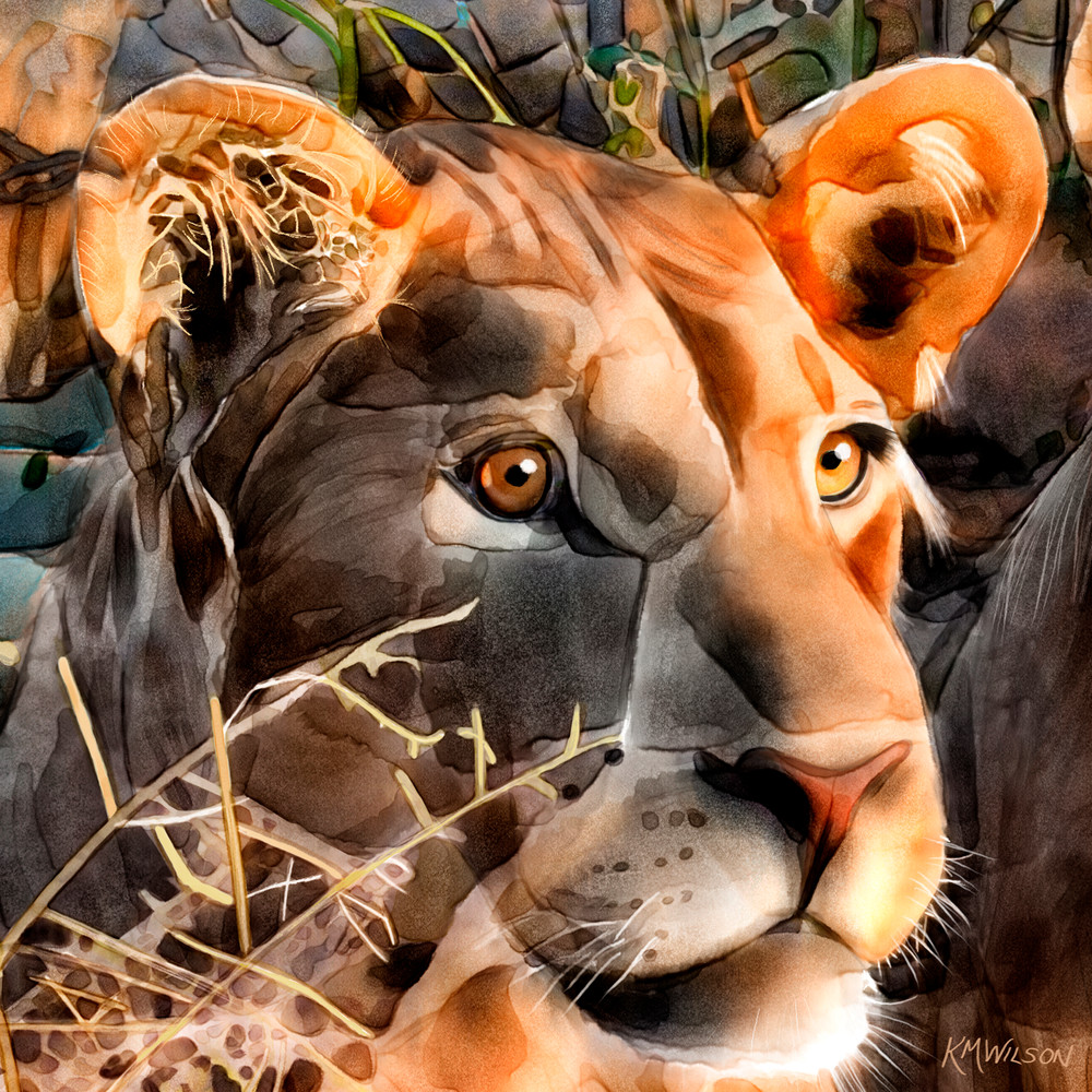 lioness, Thelma, big cat, lion, watercolor