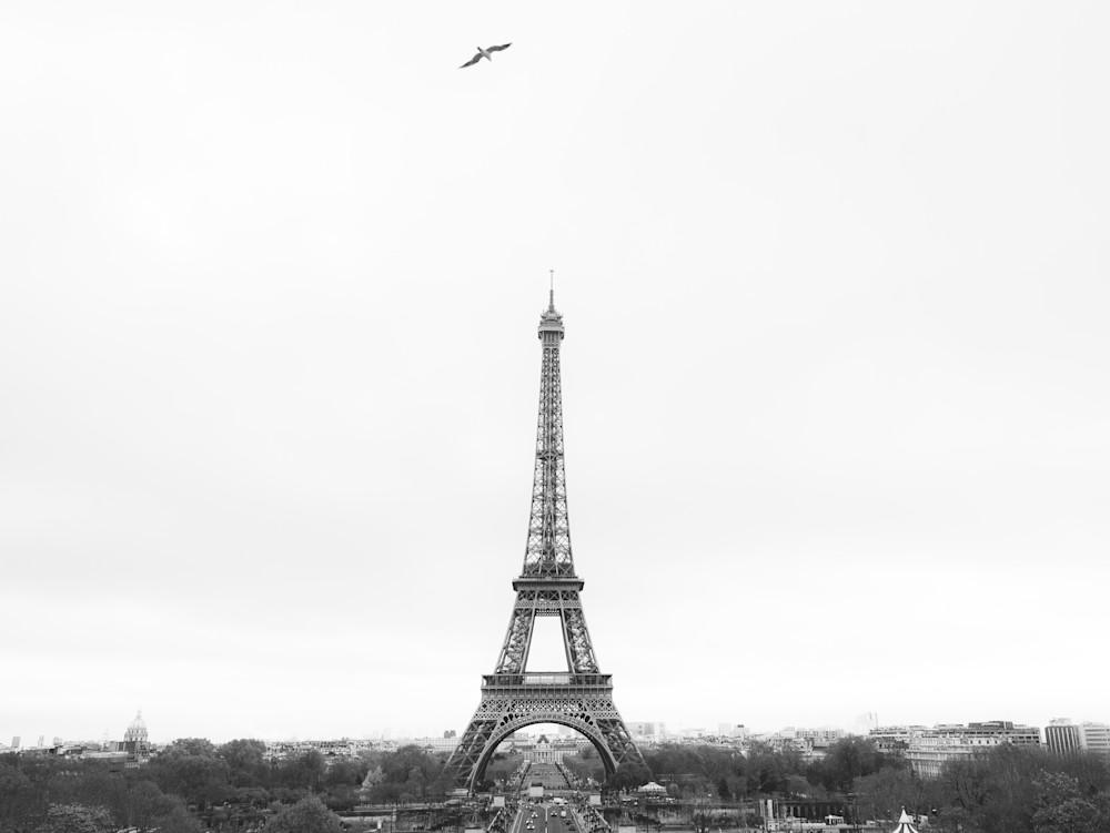 A Bird's View of Paris