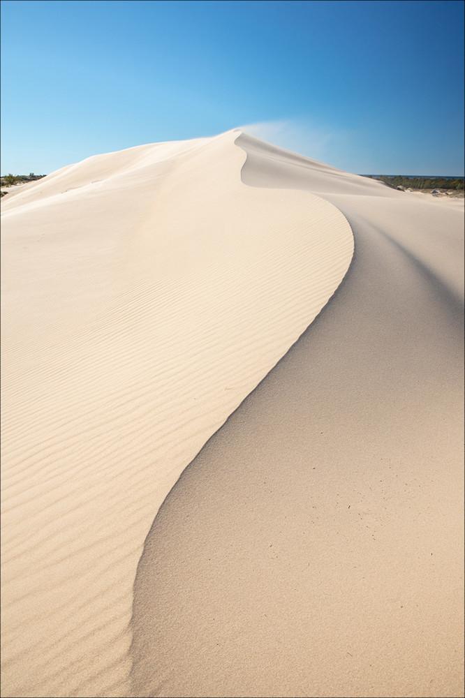 Windblown Dune