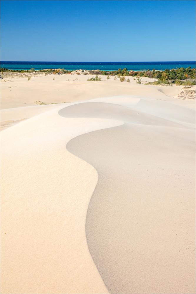 Sculpted Dune
