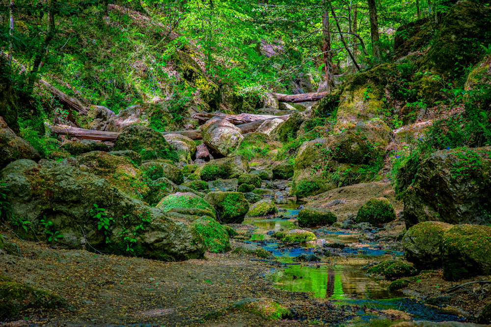 Clark Creek Natural Area stream photography