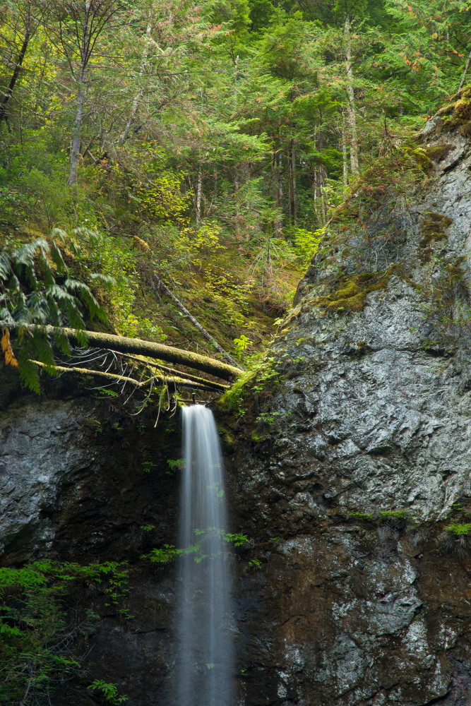 Olympic Ntl Park Waterfall