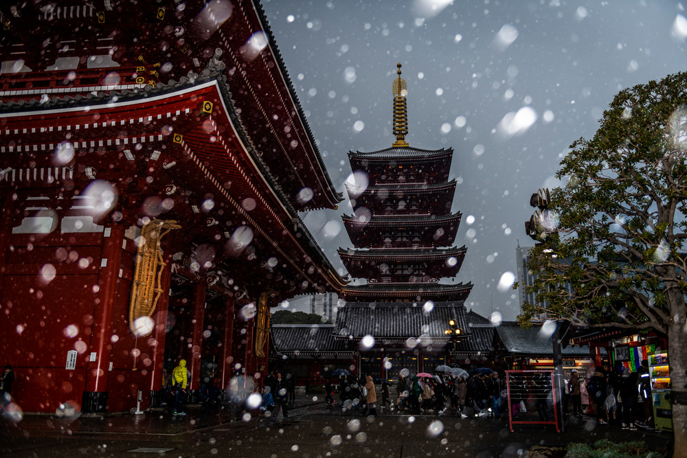 Sensoji in Snow