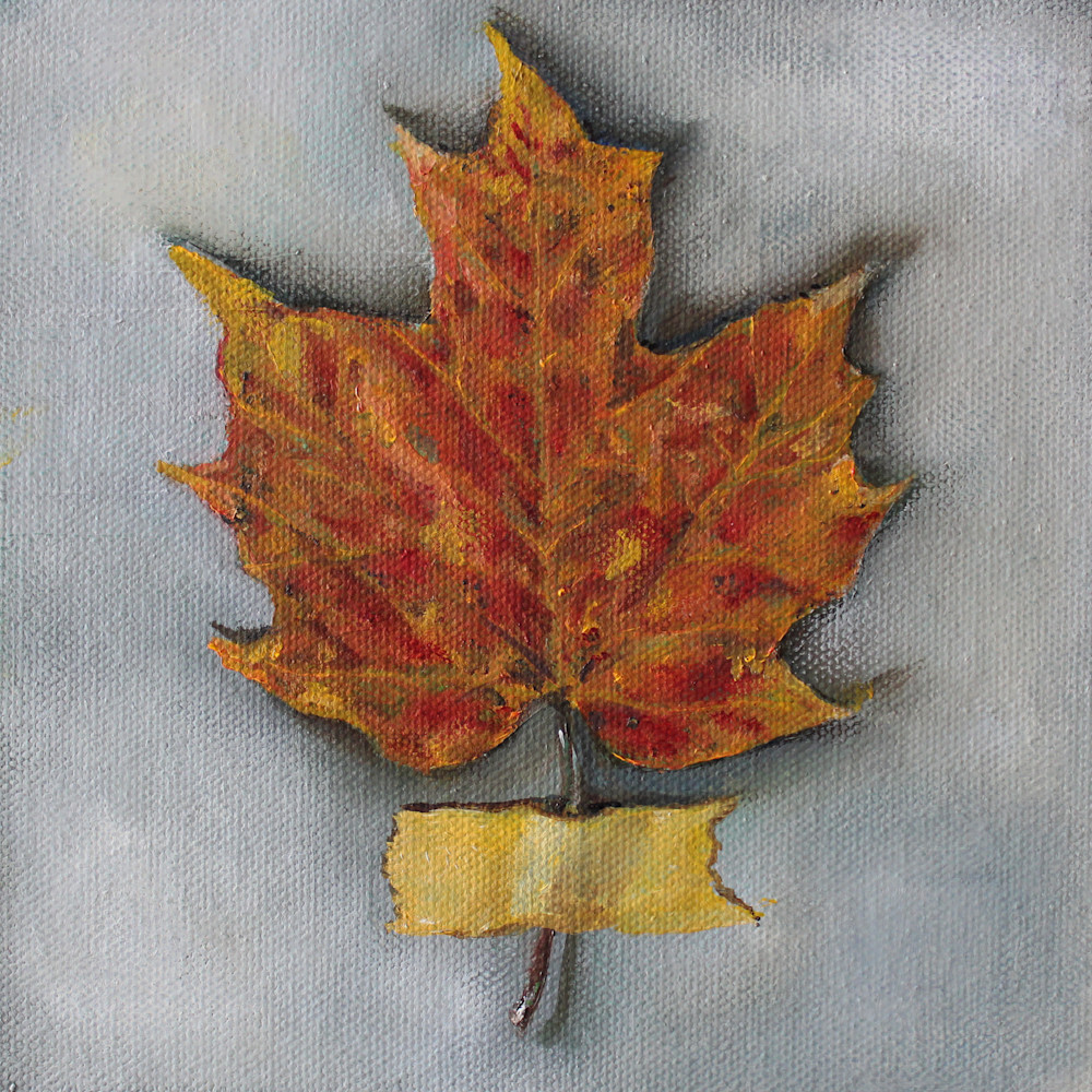 Maple Leaf with Tape