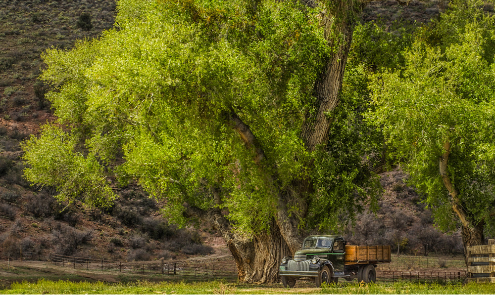 Country Shade For An Oldtimer Photography Art | JL Grief Fine Art Photography