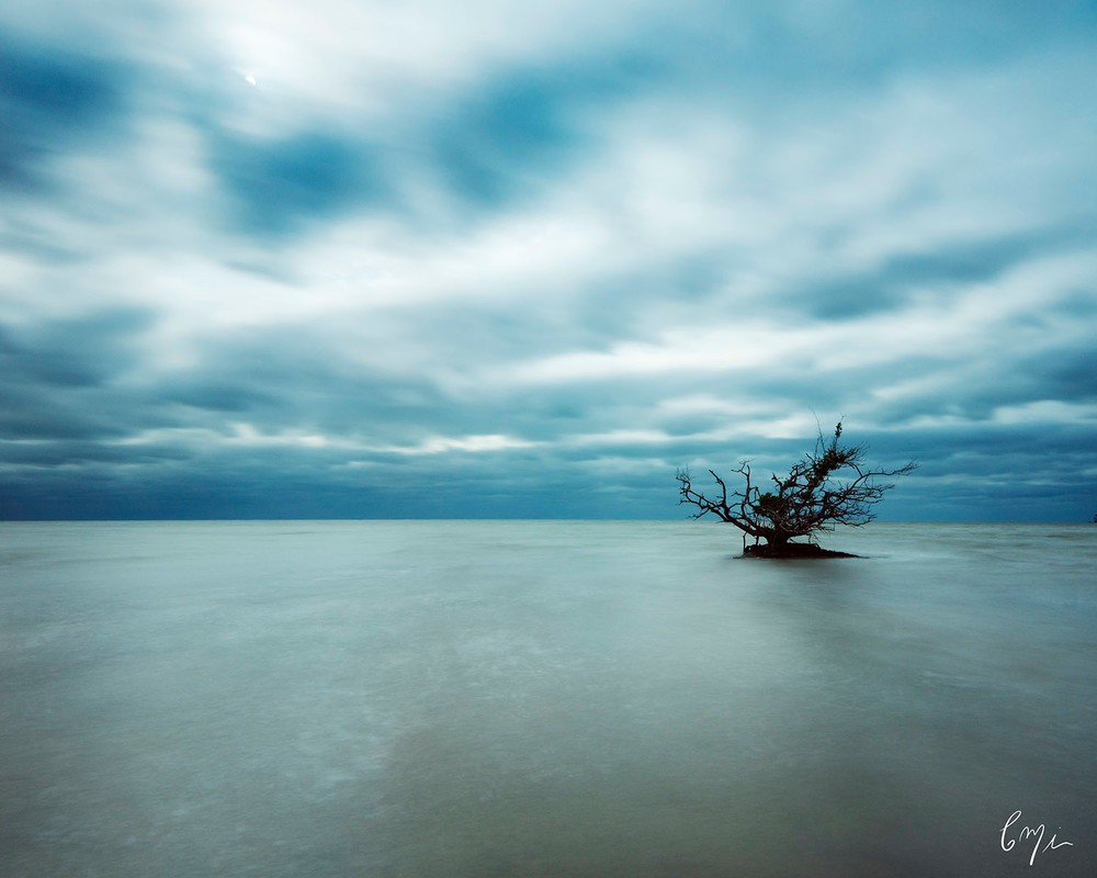 Constance Mier Photography - beautiful florida waterscapes