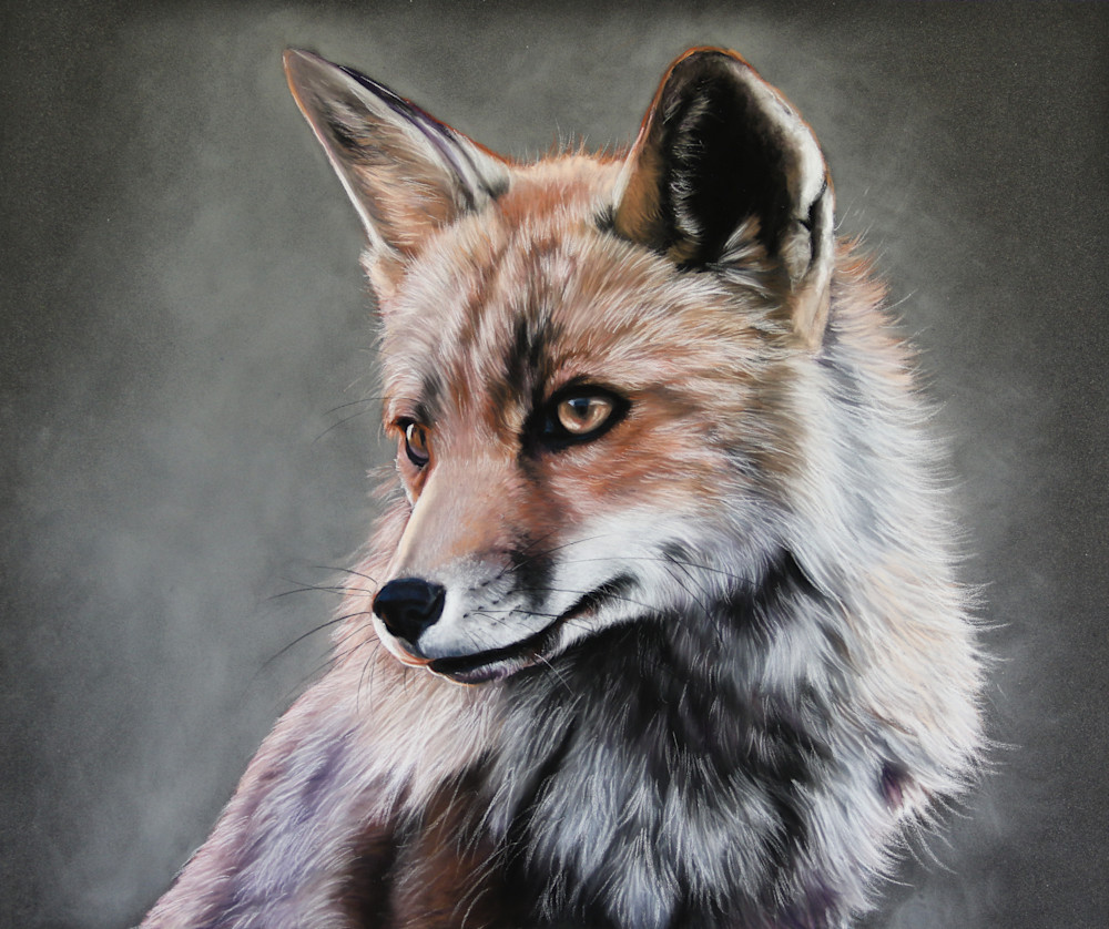 Fire Fox Art | Lauren Herr Fine Art