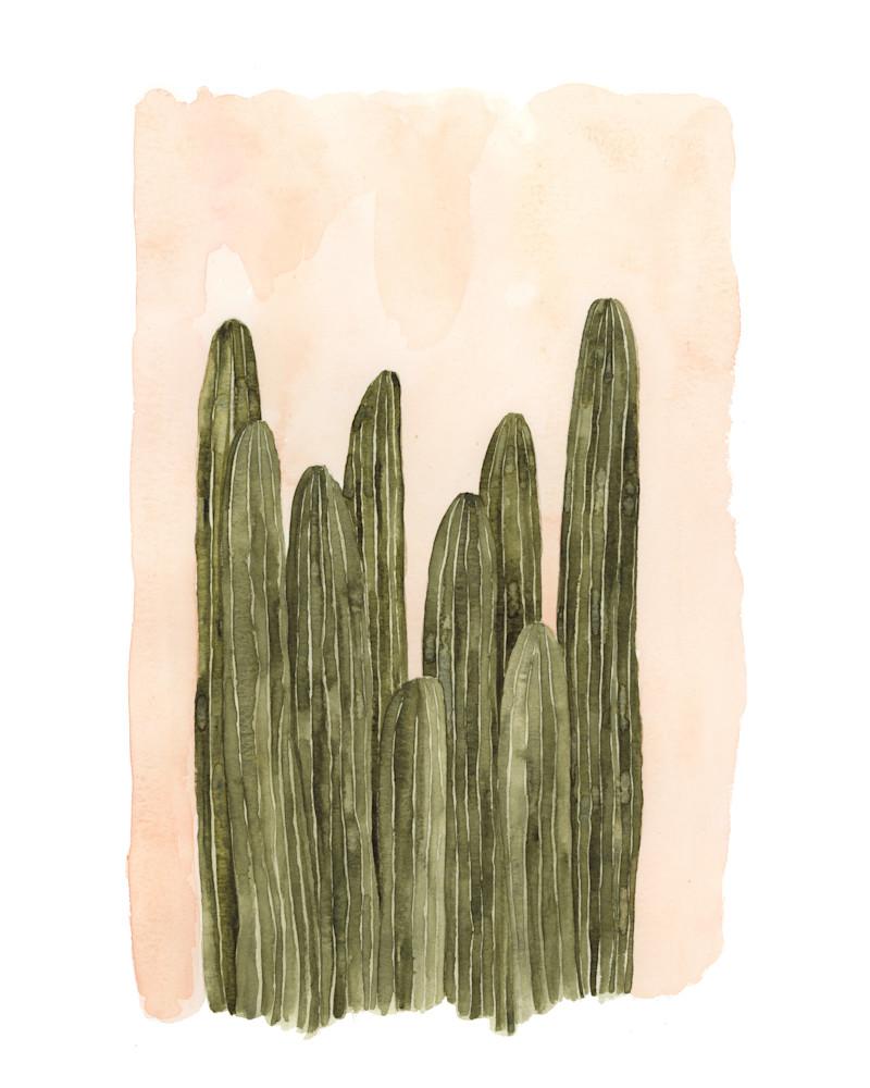 Column Cacti