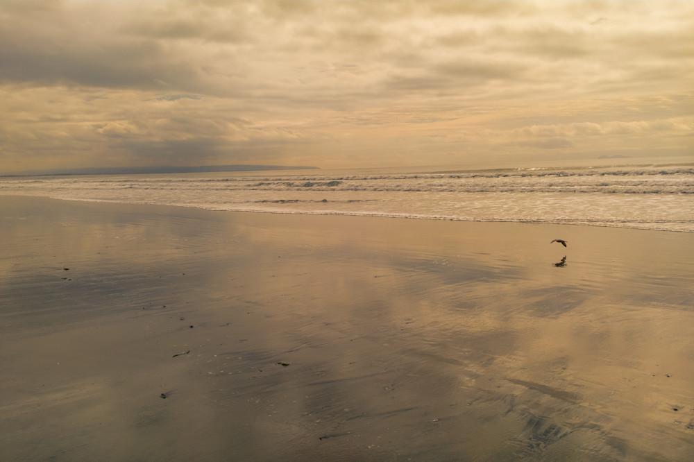 Water World - reflective beach - shop prints | Closer Views