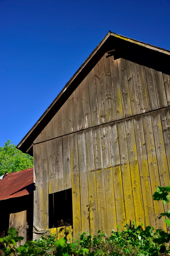 Red Tin Roof And Weathered Wood