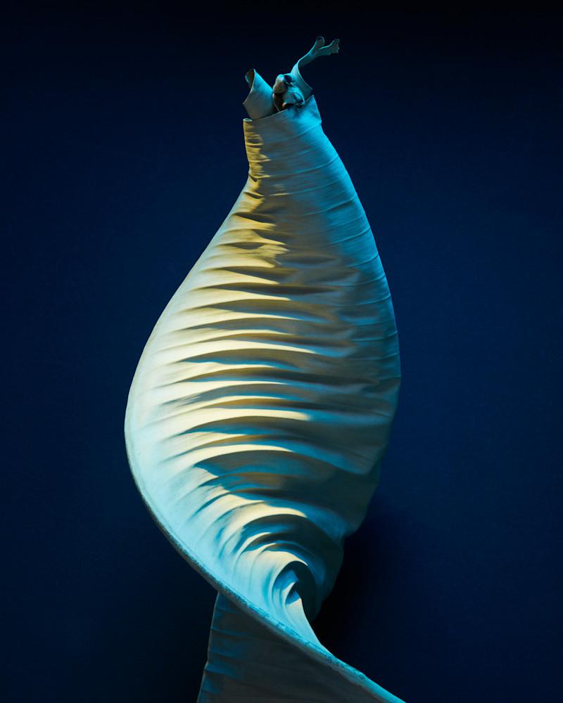 mesmerizer - William Couture