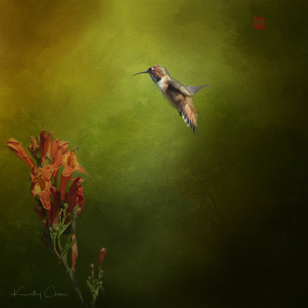 Hummingbird & red flower in greenery