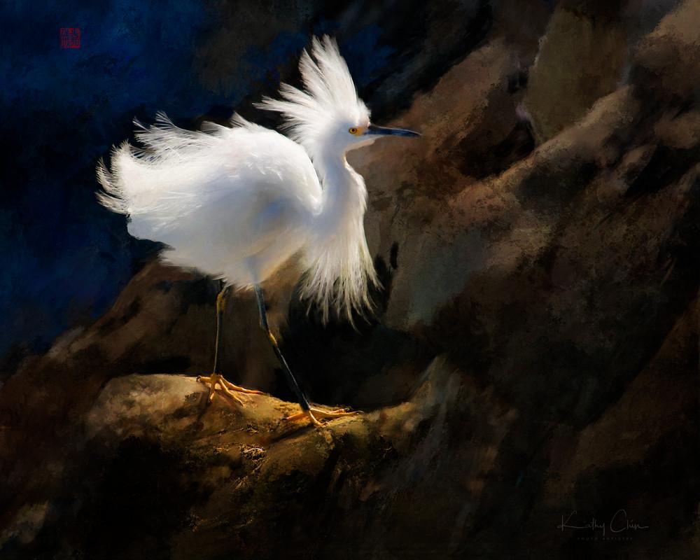 Ruffled Egret #6