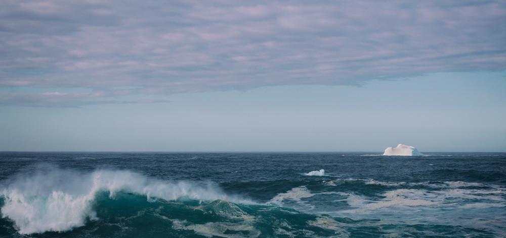 Cape Ice - Cape Spear Iceberg 2019 - Newfoundland Icebergs 2019
