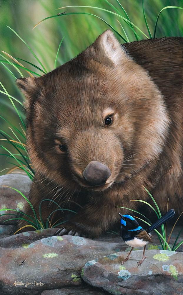 Bush Chatter - Common Wombat With Male Superb Fairy Wren Natalie | Jane Parker | Australian Native Wildlife