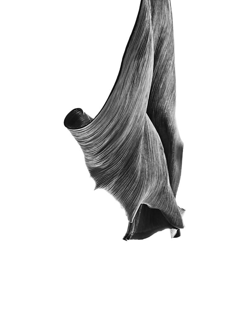 untitled #6 - William Couture