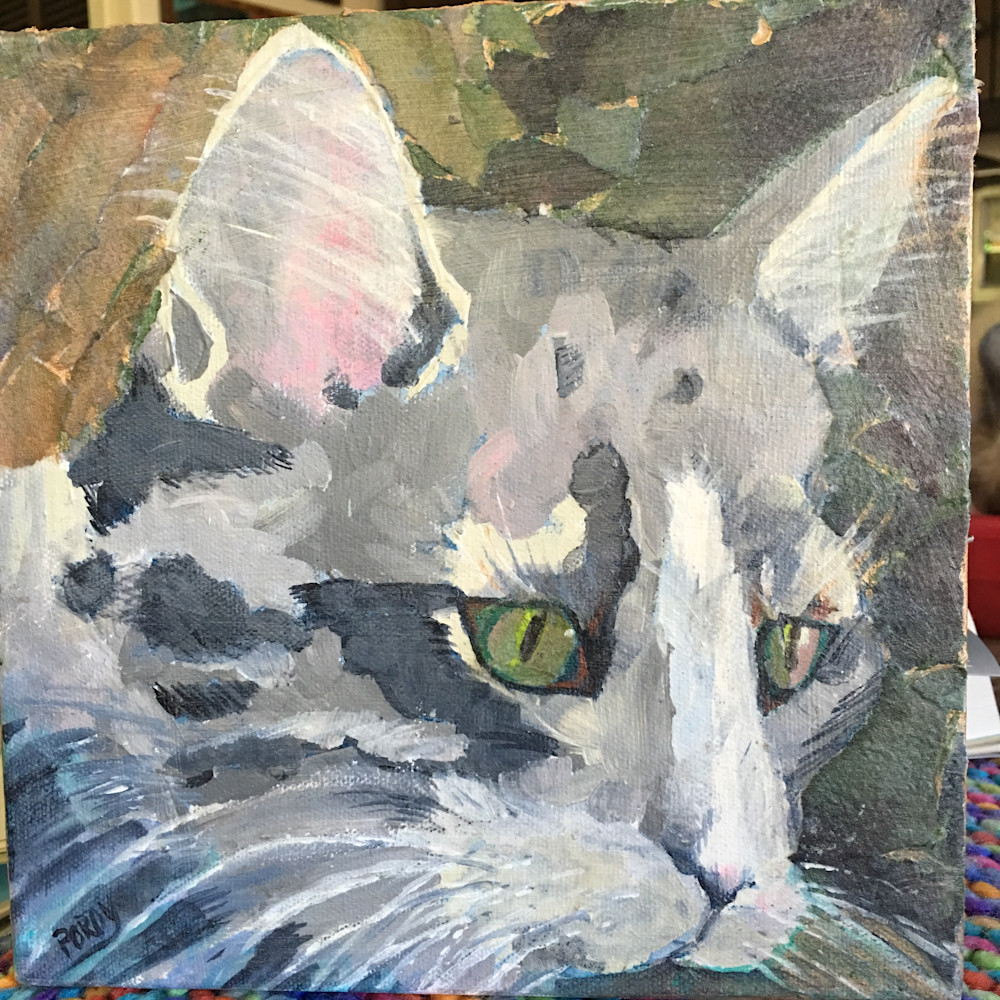 Camo Kitty Art | PoroyArt