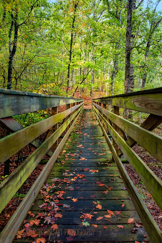 Wood Bridge Photograph 2622 | Waterfall Photography | Koral Martin Fine Art Photography