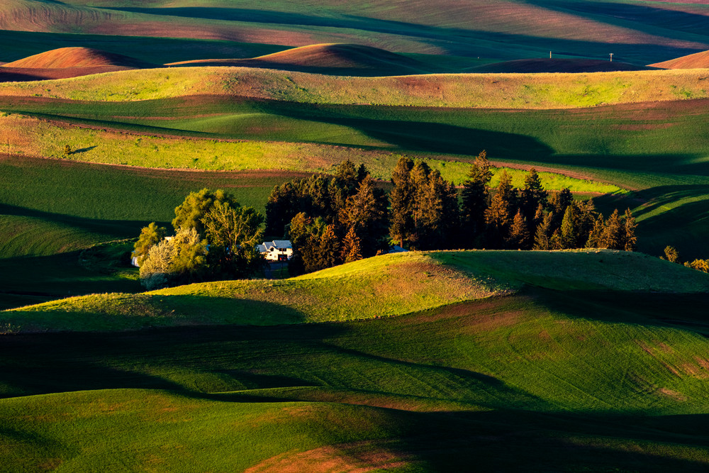 Palouse morning and a white house