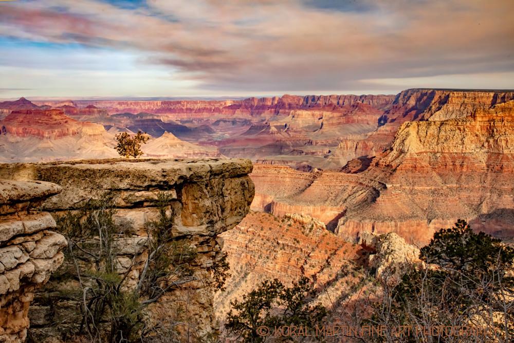 Grand Canyon Single Tree View Photograph 3527 | Arizona Photography | Koral Martin Fine Art Photography