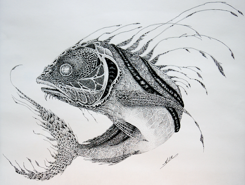 Roosterfish Art | Alice MC