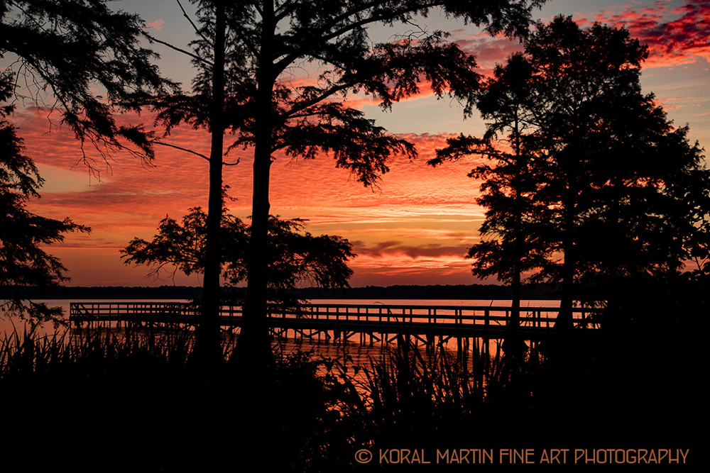 Sunrise Dock Reelfoot Lake Photograph 1371 LF  | Tennessee Photography | Koral Martin Fine Art Photography