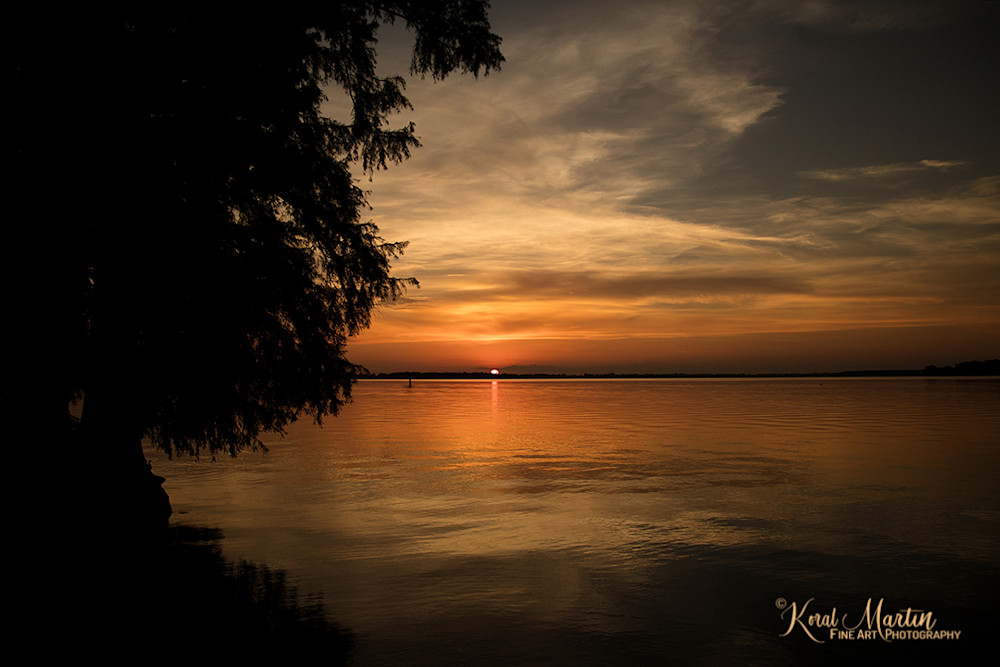 Sunset Reelfoot Lake Photograph 1291 | Tennessee Photography | Koral Martin Fine Art Photography