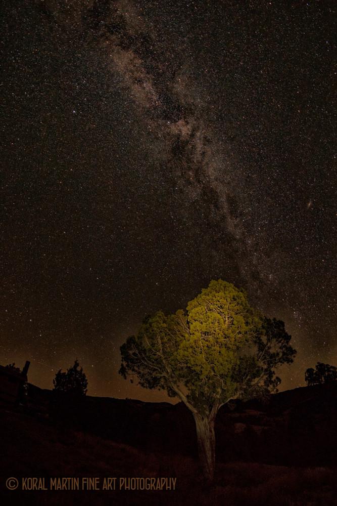 Milky way Photograph 8966 Kebler Pass  | Night Photography | Koral Martin Fine Art Photography