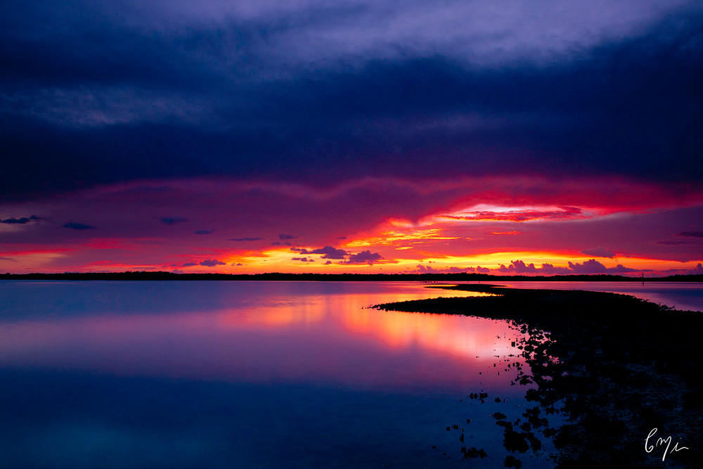 Constance Mier Photography - fine art prints of the Everglades