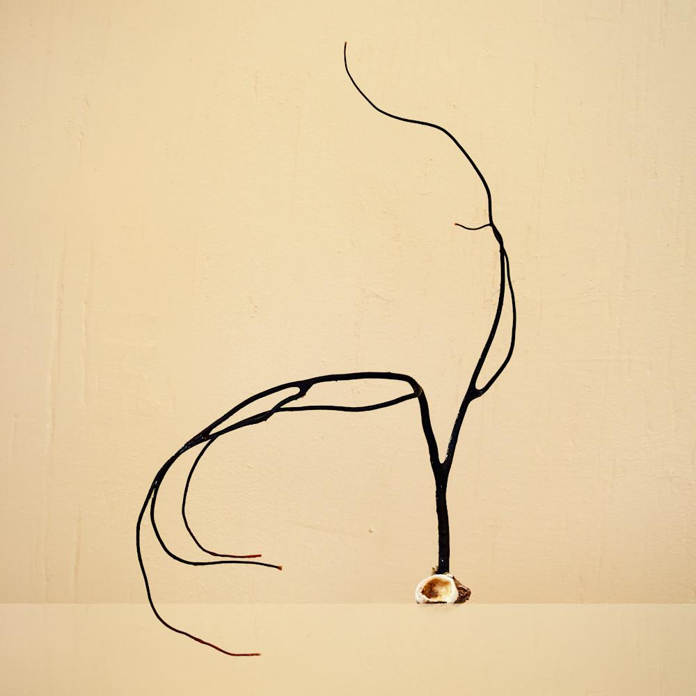 Cora - surprised - William Couture